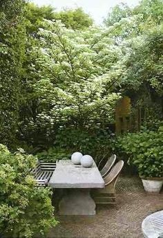 ~Al fresco dining. The California life. Great concrete table for yard