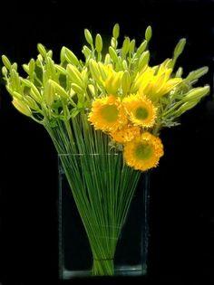 monochromatic yellow arrangement