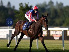 Royal Diamond, trained and ridden by Johnny Murtagh, won the G3 British Champions Long Distance Cup at Ascot on Oct. 19, over the Queen's filly Estimate.