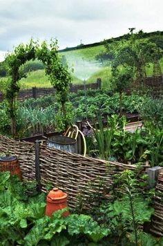 We create beautiful garden living spaces, for a concept fee never greater than Potager Garden, Veg Garden, Edible Garden, Garden Landscaping, Rabbit Garden, Vegetable Garden Planning, Backyard Buildings, Garden Projects, Garden Ideas