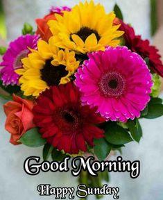 Good Morning Monday Images, Good Morning Winter, Good Morning Beautiful Images, Good Morning Post, Good Morning Photos, Good Morning Friends, Morning Images, Monday Morning, Good Morning Flowers Rose