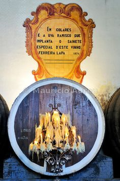 Colares Bodega Regional, del famoso vino de Colares. Sintra, Portugal