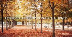 Malgré un bel été indien, il semble que l'automne soit finalement bien installé à Paris. Cette saison post grandes vacances, terrasses, chaleur et autres couchés de soleil habille la capitale...