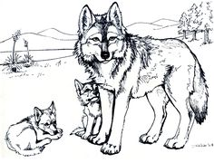 Wolf Coloring Pages for Adults . Beautiful Wolf Coloring Pages for Adults . Elegant Free Coloring Pages Wolf Puppy Coloring Pages, Coloring Pages For Grown Ups, Flower Coloring Pages, Coloring Pages To Print, Colouring Pages, Free Coloring, Coloring Rocks, Doodle Coloring, Kids Coloring