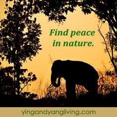 1000+ images about Zen Messages on Pinterest | Zen ...