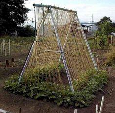 Garden Trellis idea...use an old swing set