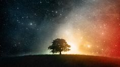 Cosmic Hilltop, Standing Alone n colorful, galaxy on the horizon, day vs night, tree in cosmos wallpaper