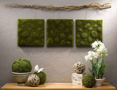 Are you kidding? Look how this is mounted! love it: DIY moss wall art
