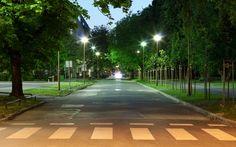 De lichtarmaturen in Dichterswijk zijn grotendeels hetzelfde. De lantaarnpalen in het Royco terrein willen we de in buurt met witte LED verlichting voorzien, omdat uit onderzoek blijkt dat witte LED verlichting veel meer positieve punten heeft dan de standaard gele verlichting. De speelplaatsen zullen we  met andere verlichting voorzien.