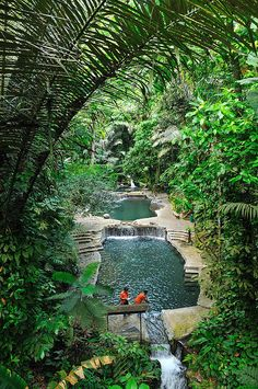 Natural thermal pools at Hidden Valley Springs in Philippines.