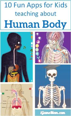 10 apps for kids to learn about human body -- apps are perfect learning tools to learn human anatomy and functions. With interactive multi-media features it is fun to see the inside of your body and play with the interactive visuals and videos. Kids w Science Lessons, Teaching Science, Science For Kids, Science Activities, Science Projects, Teaching Kids, Activities For Kids, Apps For Kids, Educational Activities