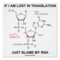If I Am Lost In Translation