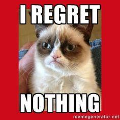I REGREt NOTHING - No cat   Meme Generator
