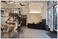 Exposição de longa duração Museu de Zoologia da USP | Escritório Paulistano + Metrópole Arquitetos