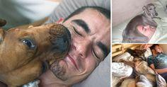Estas son las 20 situaciones más enternecedoras y comunes por las que pasas cuando duermes con tu mascota todos los días. Tu cama deja de ser tuya desde entonces