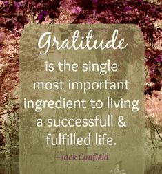 jack canfield quotes Learn more at http://www.mind-joy.com/  #jackcanfield #jackcanfieldquotes  #kurttasche