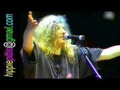Florian Pittis - Toti suntem putin luati - Pasarea Colibri - Camel Planet, Olimp, 1997 - YouTube Give Me Strength, Camel, Give It To Me, How To Plan, Concert, Plane, Music, Breathe, Youtube