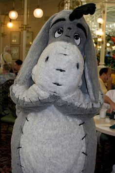 Wow, if I would have see Eeyore in person at Disneyland the last time I went, I would SOOO have tackled him and hugged the heck out of him!! LOL!!