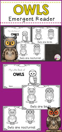 Owl Emergent Reader-Freebie Owls Kindergarten, Kindergarten Reading Activities, Kindergarten Activities, Book Activities, Owl Babies Book, Baby Owls, Owl Writing, Owl Facts, Animals