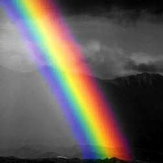 my two sons and i drove thru the beginning of a rainbow, it was so cool.  i say the beginning because there was no pot of gold there.