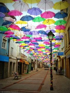 New canopy of colorful umbrellas in Portugal