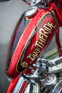 Via Harley Davidson Facebook - Photo of the Day: Gonzo. (Photo ©Michael Lichter) #harleydavidsontank