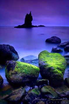 The rocks of Elnar on Snaefelsness Peninsula, Iceland