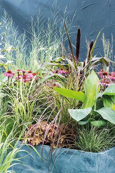 Je hoort het steeds vaker, maar wat is biodiversiteit eigenlijk en wat kun je er zelf aan doen in de tuin? Lees het op onze intratuin.nl Rue Verte, Low Maintenance Landscaping, Modern Garden Design, Garden Borders, Cute Drawings, Beautiful Birds, Garden Inspiration, Cute Puppies, Life Is Good