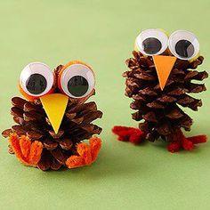 #Turkey Pinecones