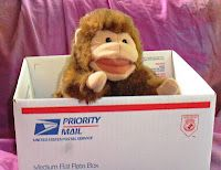 dear zoo - need to get me some priority mail boxes! from: Beyond the Book Storytimes
