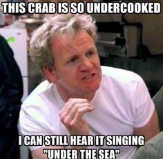 63 best gordon ramsay fun images jokes funny qoutes hilarious rh pinterest com