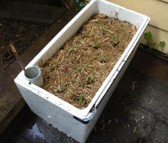 DIY Self Watering Planter Box