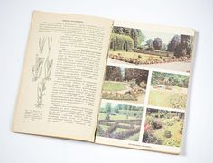 155 Best Vintage Gardening Books Vintage Landscaping Design Books