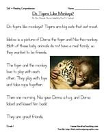 Do Tigers Like Monkeys? – First Grade Reading Comprehension Test: Use the information in the story to answer the 5 comprehension questions. Answer Key Is Included.    Test Type: Non-Fiction Article  Grade Level: First Grade    Do Tigers Like Monkeys? | 1st Grade Reading Comprehension Test    Information: First Grade Reading Comprehension. 1st Grade Reading Comprehension Test. Non-Fiction. Article. Tigers, Monkeys.