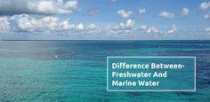 Global Marine Renewable