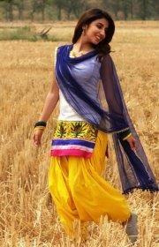 257 Best Punjabi Suits Images Indian Clothes Designer Punjabi