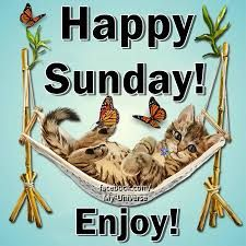 9 images tagged with Happy Sunday Pictures Cafe Good Morning Sunday Images, Sunday Pictures, Good Morning Friends, Good Morning Good Night, Morning Pictures, Good Morning Wishes, Good Morning Quotes, Happy Sunday Morning, Morning Pics