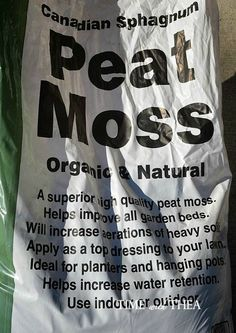 Spread organic and natural peat moss over grass seed. / timewiththea.com