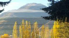 Colorado Patagónico