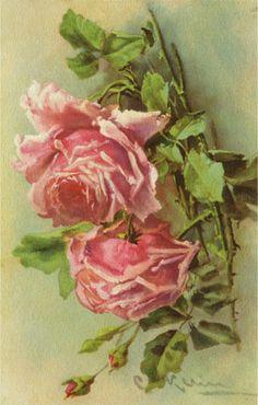 Carte de Catharina Klein