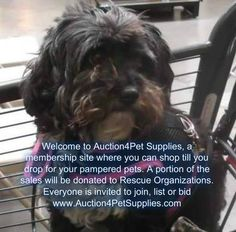 This is what www.Auction4PetSupplies.com about, so lets all help rescue organizations by joining, listing and bidding on our website. See you there with a woof from Layla