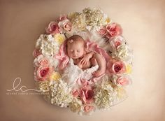 Gippsland Newborn Photographer