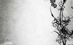 Abstract black and white flowers HD Wallpaper