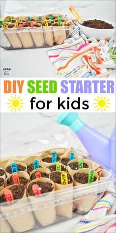This DIY Seed Starter for Kids uses recycled items to create a seed starter greenhouse. This is a great way to get kids started with gardening! Spring Activities, Preschool Activities, Nature Activities, Outdoor Activities, Diy Greenhouse, Summer Kids, Spring Crafts, Flower Crafts, Easy Crafts