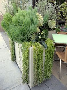 60 Stunning Desert Garden Landscaping Ideas for Home Yard - Rockindeco Small Space Gardening, Small Garden Design, Small Gardens, Outdoor Gardens, Succulent Landscaping, Planting Succulents, Garden Landscaping, Landscaping Ideas, Succulents In Containers