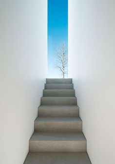 Palmgren-House, Sweden http://www.johnpawson.com/works/palmgren-house/