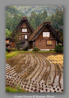 Gasho Houses, Japan