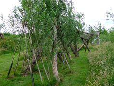 stokken stammen en  twijgen gebruiken we voor natuurlijke speelgelegenheid, na gebruik geen afval !