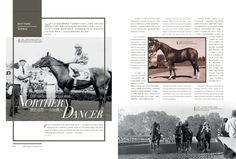 The Historic Racehorse - Northern Dancer Read more at Issue 6 http://issuu.com/blacktype/docs/150126_blacktype_issue6/1… #blacktypehk #horseracing