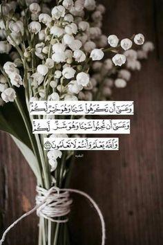 """""""والله يعلم وانتم لاتعلمون"""" كلى ثقة فى عظمة تدبيرك لجميع أمورى يالله❤"""
